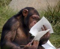 lecture,méthode,réformes